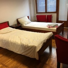 Отель Hram Homestay Сербия, Белград - отзывы, цены и фото номеров - забронировать отель Hram Homestay онлайн комната для гостей фото 3