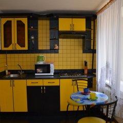 Апартаменты Apartments In The Center Of Nikolaev Студия фото 8