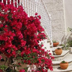 Отель Apartamentos Marítimo Sólo Adultos Эль-Грове фото 6