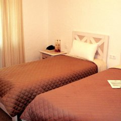 Гостиница Селена 4* Стандартный номер с различными типами кроватей фото 3