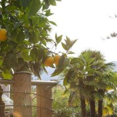 Отель Park Hotel Mignon Италия, Меран - отзывы, цены и фото номеров - забронировать отель Park Hotel Mignon онлайн фото 2