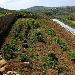 Отель Hal Saghtrija Мальта, Зеббудж - отзывы, цены и фото номеров - забронировать отель Hal Saghtrija онлайн фото 7
