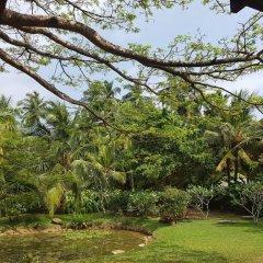 Отель Dunes Unawatuna Hotel Шри-Ланка, Унаватуна - отзывы, цены и фото номеров - забронировать отель Dunes Unawatuna Hotel онлайн приотельная территория