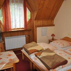 Отель Willa Świdrówka Закопане комната для гостей фото 5