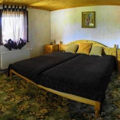 Отель Holiday home Kalina Болгария, Чепеларе - отзывы, цены и фото номеров - забронировать отель Holiday home Kalina онлайн комната для гостей фото 4