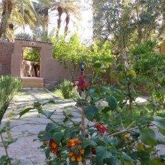 Отель Riad Tabhirte фото 8
