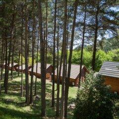 Отель Camping Fontfreda фото 4