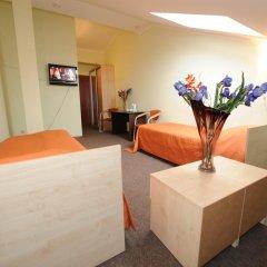 Гостиница Ирис 3* Стандартный номер разные типы кроватей фото 21