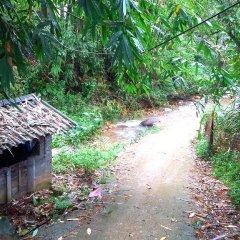 Отель Hoang Kim Homestay Шапа приотельная территория