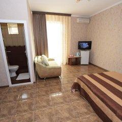 Гостиница Селини Стандартный номер двуспальная кровать фото 14