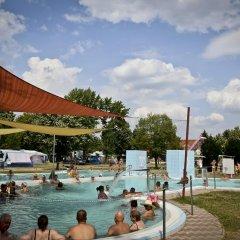 Отель Rajna VillaBridge & SPA Mini Hotel Венгрия, Силвашварад - отзывы, цены и фото номеров - забронировать отель Rajna VillaBridge & SPA Mini Hotel онлайн бассейн фото 3