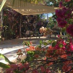 Отель Katamah Beachfront Resort Ямайка, Треже-Бич - отзывы, цены и фото номеров - забронировать отель Katamah Beachfront Resort онлайн фото 13