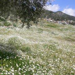 Natureland Efes 3* Стандартный номер с различными типами кроватей фото 8