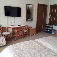 Гостевой дом Родник Стандартный номер с различными типами кроватей фото 2