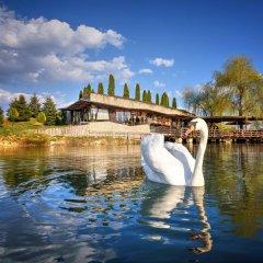 Etno Village Cardaci in Travnik, Bosnia and Herzegovina from 126$, photos, reviews - zenhotels.com outdoors