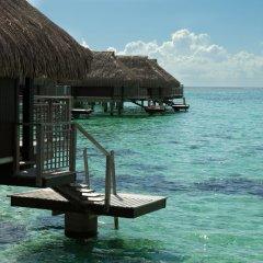 Отель Hilton Moorea Lagoon Resort and Spa 5* Бунгало с различными типами кроватей фото 3