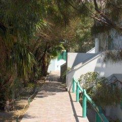 Отель Ira Studios Греция, Остров Санторини - отзывы, цены и фото номеров - забронировать отель Ira Studios онлайн фото 6