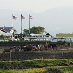 Отель El Patio Ranch Минамиогуни помещение для мероприятий
