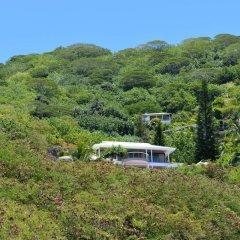 Отель Villa Blue Lagoon by Tahiti Homes Французская Полинезия, Папеэте - отзывы, цены и фото номеров - забронировать отель Villa Blue Lagoon by Tahiti Homes онлайн
