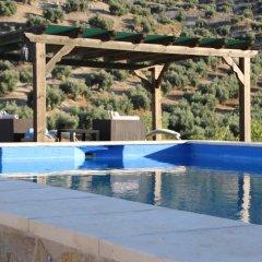Отель Casa El CastaÑo Алькаудете бассейн фото 3
