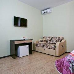 Гостиница Albatros в Уссурийске отзывы, цены и фото номеров - забронировать гостиницу Albatros онлайн Уссурийск удобства в номере фото 2