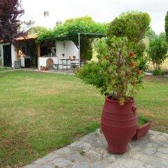 Отель Evangelia's Family House Греция, Ситония - отзывы, цены и фото номеров - забронировать отель Evangelia's Family House онлайн фото 8