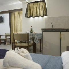 Antonios Hotel Студия с различными типами кроватей фото 7