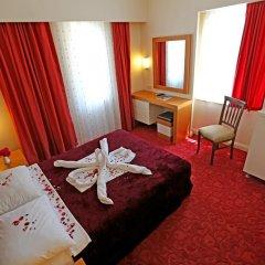 Forest Park Hotel 3* Стандартный номер с различными типами кроватей фото 2