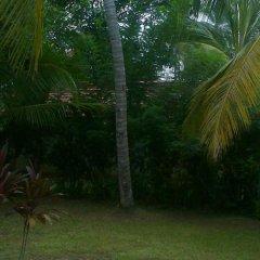 Отель Rohan Villa Шри-Ланка, Хиккадува - отзывы, цены и фото номеров - забронировать отель Rohan Villa онлайн фото 2