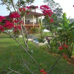 Отель Nisalavila Шри-Ланка, Берувела - отзывы, цены и фото номеров - забронировать отель Nisalavila онлайн фото 6