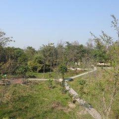 Отель Lumbini Buddha Garden Resort Непал, Лумбини - отзывы, цены и фото номеров - забронировать отель Lumbini Buddha Garden Resort онлайн приотельная территория