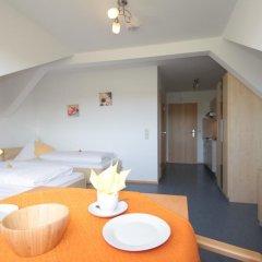 Отель Ferienhof Rieger Студия с различными типами кроватей фото 3