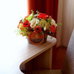Гостевой дом Вишнёвый Сад 3* Стандартный номер с различными типами кроватей фото 2