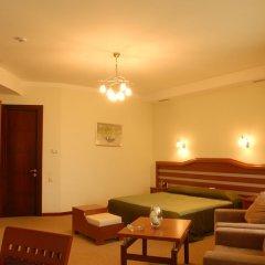 Отель Vedzisi Тбилиси комната для гостей фото 4