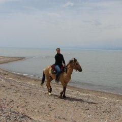 Отель Teskey B&B Кыргызстан, Каракол - отзывы, цены и фото номеров - забронировать отель Teskey B&B онлайн пляж