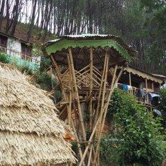 Отель Kathmandu Eco Hostel Непал, Катманду - отзывы, цены и фото номеров - забронировать отель Kathmandu Eco Hostel онлайн фото 4
