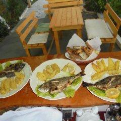Отель Zace Studios Албания, Ксамил - отзывы, цены и фото номеров - забронировать отель Zace Studios онлайн питание фото 3