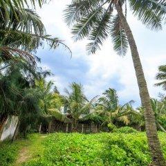 Отель An Bang Beach Hideaway Homestay Вьетнам, Хойан - отзывы, цены и фото номеров - забронировать отель An Bang Beach Hideaway Homestay онлайн приотельная территория