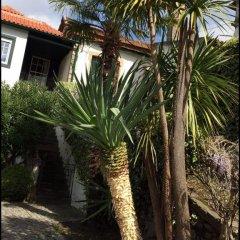 Отель Quinta do Fôjo Ламего фото 7