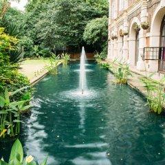 Отель Safestay London Kensington Holland Park бассейн