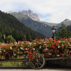 Alpine Touring Hotel Долина Валь-ди-Фасса фото 2