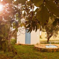Отель Olive Grove Resort 3* Студия с различными типами кроватей фото 46