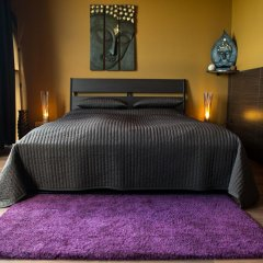 Апартаменты Balu Apartments Полулюкс с разными типами кроватей фото 6