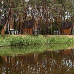 База Отдыха Лесная на Самаре Коттедж фото 5