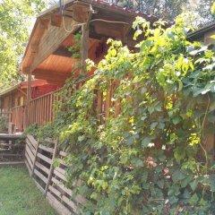 Отель Country Club Primi Faggi Санто-Стефано-ин-Аспромонте