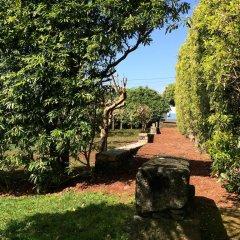 Отель Quinta de Santa Clara Португалия, Понта-Делгада - отзывы, цены и фото номеров - забронировать отель Quinta de Santa Clara онлайн фото 10