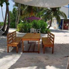 Отель Batuta Maldives Surf View Guest House Мальдивы, Северный атолл Мале - отзывы, цены и фото номеров - забронировать отель Batuta Maldives Surf View Guest House онлайн бассейн