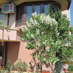 Отель Bogoevi Apartments Болгария, Бургас - отзывы, цены и фото номеров - забронировать отель Bogoevi Apartments онлайн фото 12