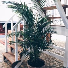 Отель Casa Paço D`Ilhas фото 14