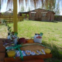 Отель Cabañas Haras de Cuyo Сан-Рафаэль фото 2